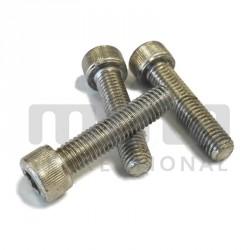Screw Chc M6x15 zinc plated iron